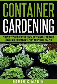 container gardening simple techniques