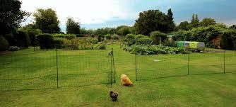 Learn Build Chicken Coop Chicken Coop Eglu