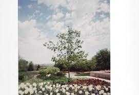 review of lauritzen gardens