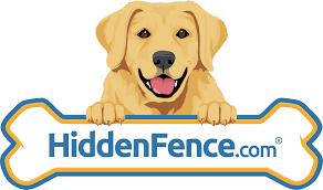 Hidden Dog Fence Alarm Is Beeping At Transmitter