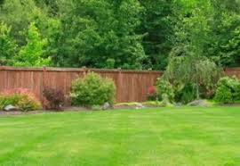Fence Cleaning 281 306 5159 League City Power Washing