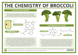 the chemistry of broccoli scitech connect