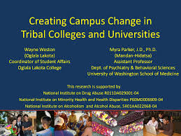 Creating Campus Change in Tribal Colleges and Universities
