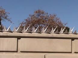 Anti Climb Razor Wall Spikes For Perimeter Security Security Fence Backyard Fences Perimeter Security
