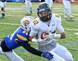 Aaron Nelson - Football - Delaware Valley University Athletics