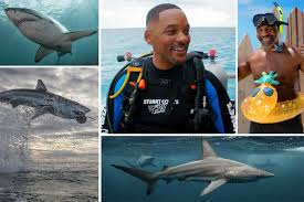 Shark Week 2020 schedule: Your guide to all 24 specials