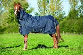 horseware amigo pony bravo disc 1200d