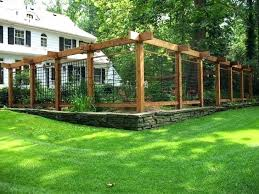 dogs super easy garden fence ideas