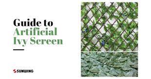 Full Guide To Artificial Ivy Screen Rolls Trellis Sunwing