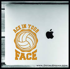 Ace In Your Face Volleyball Vinyl Car Laptop Decal Decal Drama