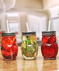 owl mason jars set of four mason
