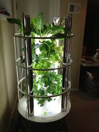 My Indoor Tower Garden With Grow Lights Moves Outside In The Summer Vegetable Garden Design Unique Gardens Tower Garden