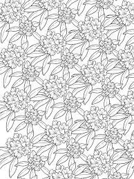 Kleurplaten En Zo Kleurplaat Van Bloemen Voor Volwassenen