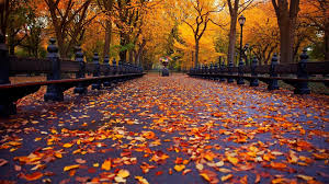 autumn aesthetic laptop wallpapers