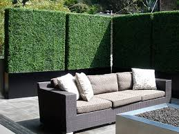 Fence Screening Ideas 5 Privacy Ideas For Your Outdoor Areas Architecture Design