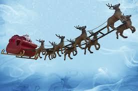 Image result for reindeer