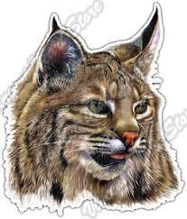 Bobcat Lynx Wildcat Cat Wildlife Animal Car Bumper Vinyl Sticker Decal 4 X5 Ebay