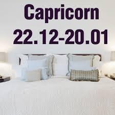 Capricorn Decals