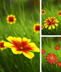 android flowers live wallpapers free