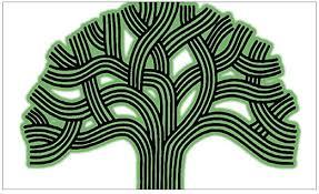 Amazon Com Cafepress Oakland Tree Hazed Green Rectangle Bumper Sticker Car Decal Home Kitchen