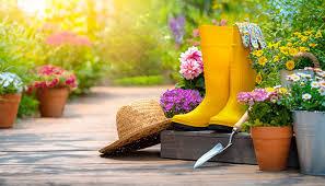 gardening blogs uk top 10 vuelio