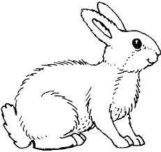 printable bunny rabbit coloring pages