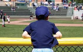 Safefoam Baseball Fence Topper Top Rail Padding Coversports