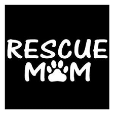 Rescue Mom 4x8 Pet Rescue Dog Cat Adoption Humane Society Car Window Decal Ebay
