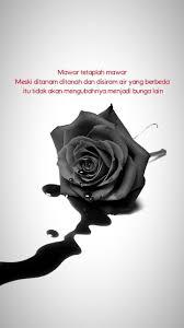 kata mutiara tentang bunga mawar untaian kata
