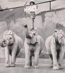 Buckles Blog: Adele Nelson Elephants #1