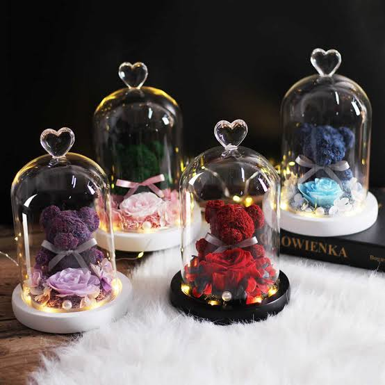 """Image result for Teddy Bear Rose Flowers In Glass Dome gif"""""""