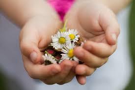 giving is happiness-н зурган илэрц