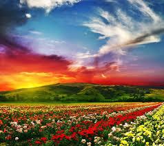 wallpapers beautiful landscape