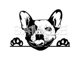 French Bulldog Decal Sticker Car Truck Window Vinyl Choice Of 1 Ebay