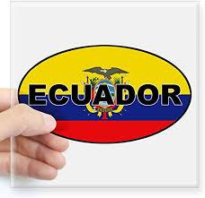 Amazon Com Cafepress Flag Of Ecuador Oval Sticker Square Bumper Sticker Car Decal 3 X3 Small Or 5 X5 Large Home Kitchen