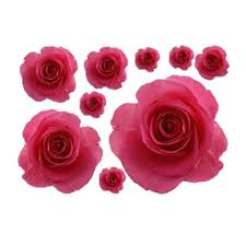 3d Pretty Rose Wall Stickers For Wall Decor My Aashis