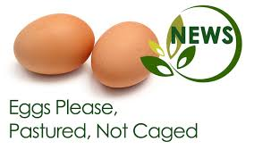 eggs please pastured not caged good