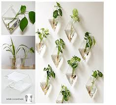 wall hanging glass planter plant flower