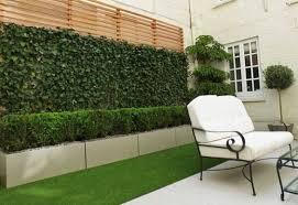 Ideal Para Agregar Vegetacion Un Poco A Un Gran Espacio Estas Espalderas Extensible Son Faciles De Mover Y Facil De Backyard Outdoor Backdrops Backyard Decor
