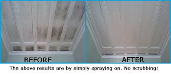 how to clean remove mould off ceilings