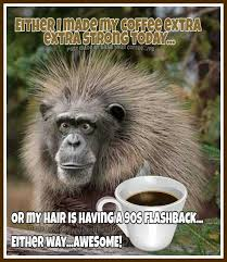 Coffee Humor | Coffee humor, Coffee quotes funny, Coffee quotes ...