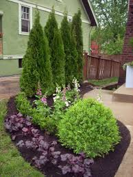 Awesome Fence With Evergreen Plants Landscaping Ideas 80 Hoommy Com