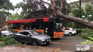 Tromba d'aria: strade bloccate, pini crollati su auto e abitazioni ...