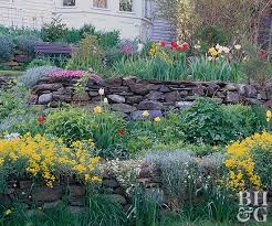 planting on a slope better homes