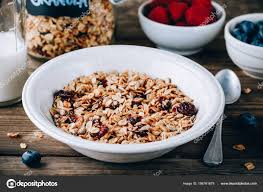 organic homemade granola cereal oats