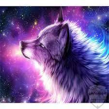 صور ذئب خلفيات و معلومات كاملة عن الذئاب صورميكس