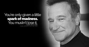 extraordinary robin williams quotes stop taking life too seriously
