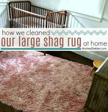 How We Cleaned Our Large Shag Rug At Home Andrea Dekker