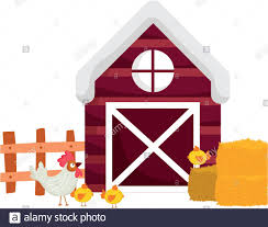 Farm Animals Rooster And Chickens Barn Fence Hay Cartoon Vector Illustration Stock Vector Image Art Alamy