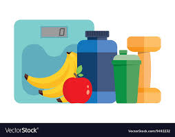 sports nutrition royalty free vector image